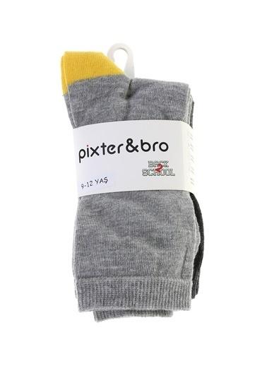 Pixter&Bro Soket Çorap Renkli